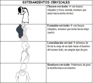 cervicales1