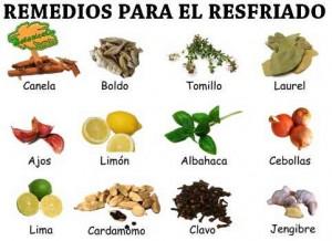 resfriado-remedios-plantas