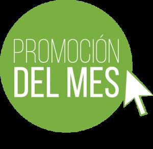 PROMOCION-DEL-MES-300x292