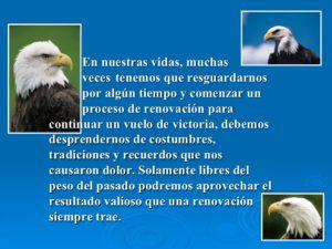 la-sabidura-del-guila-5-728